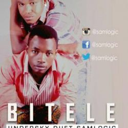 Sam Logic - Bitele