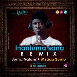 Juma Nature - Inaniuma Sana RMX Ft Msaga Sumu