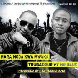 Trubadour - Mara Moja Kwa Mwaka Ft. Mr. Blue