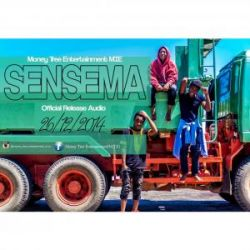Money Tree - Sensema
