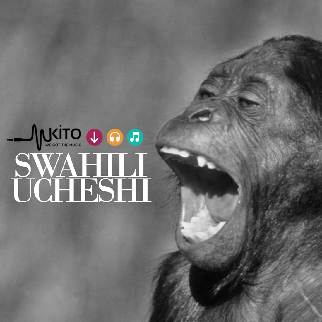 Swahili Ucheshi - BashiriCheti_SwahiliUcheshi