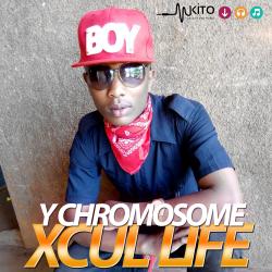 Y Chromosome - YC-Xkul Life