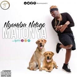 Matonya - Homa ya Jiji