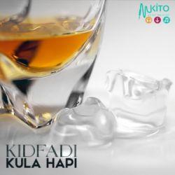 KidFadi - Roho Juu